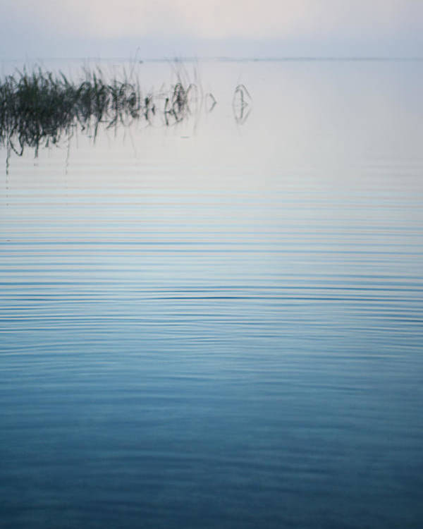 Fog Poster featuring the photograph Calm Ripples On The Lake by Parker Cunningham