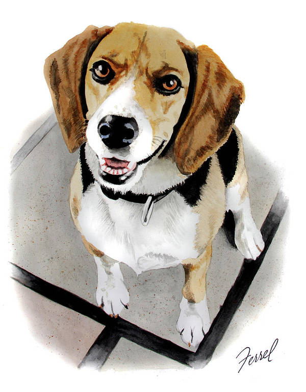 Dog Poster featuring the painting Canine Cutie by Ferrel Cordle