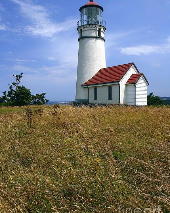 Lighthouse Oregon cape Blanco Light Coast Poster featuring the photograph Cape Blanco Light by Winston Rockwell