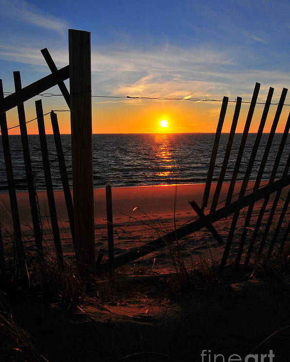 Sunset Poster featuring the photograph Cape Cod Sunset by Catherine Reusch Daley