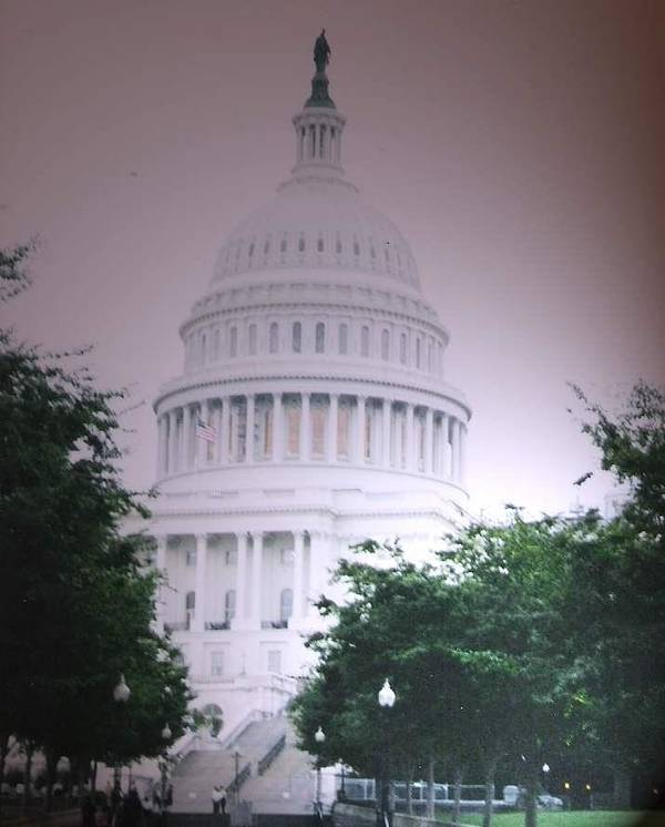 Capitol Poster featuring the photograph Capitol In Pink by Pharris Art
