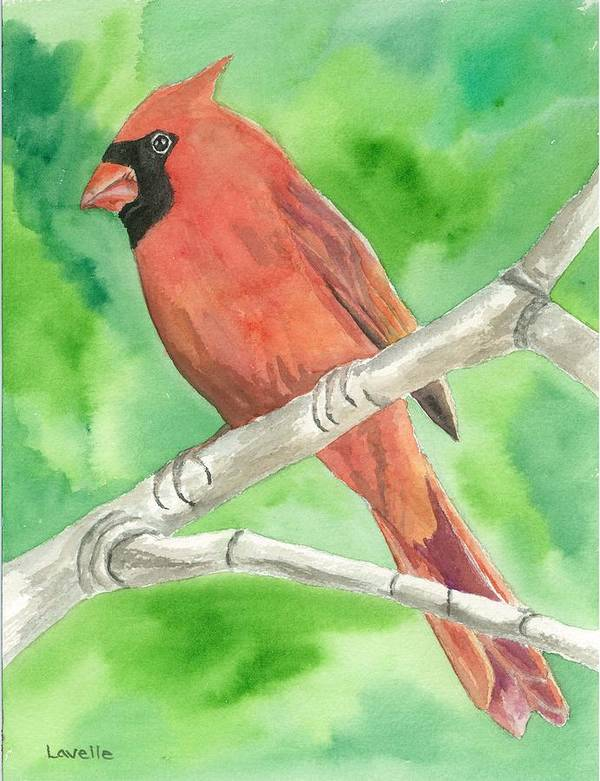 Bird Pictures Poster featuring the painting Cardinal by Kimberly Lavelle
