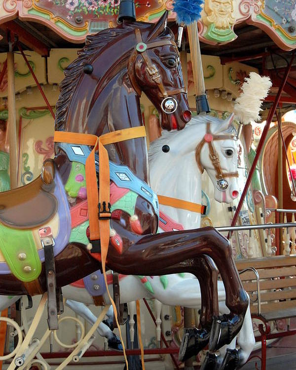 Carrousel Horse Canvas Prints Poster featuring the photograph Carrousel 54 by Joyce StJames