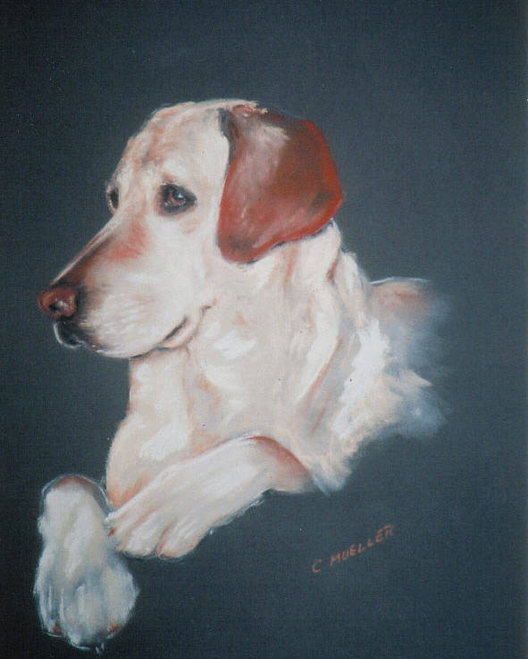 Dog Poster featuring the painting Casey by Carol Mueller