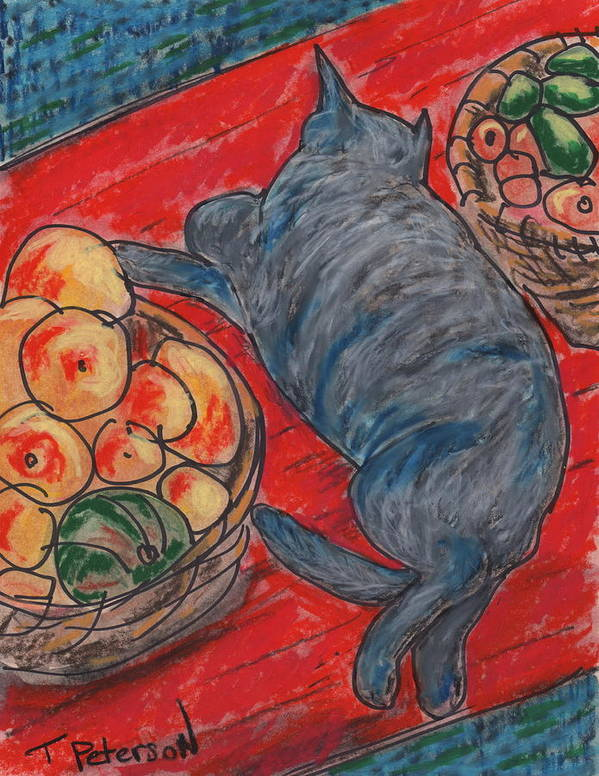 Cat Poster featuring the painting Cat Nap by Todd Peterson