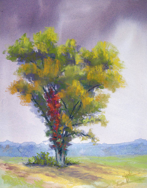 Autumn Tree Poster featuring the pastel Changing Weather Changing Tree by Christine Camp