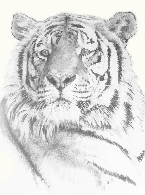 Tiger Poster featuring the mixed media Charisma by Barbara Keith