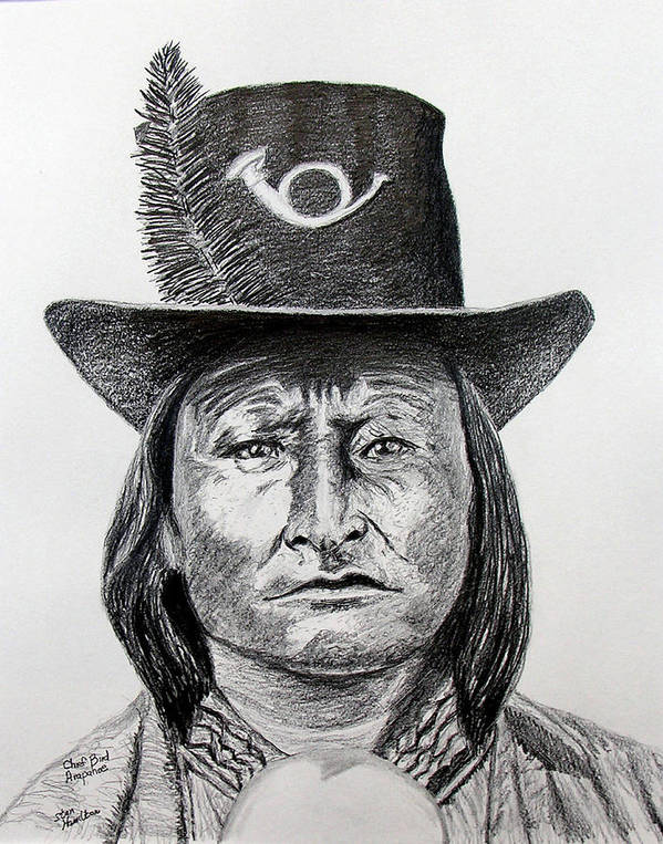 Indian Poster featuring the drawing Chief Bird-Arapahoe by Stan Hamilton
