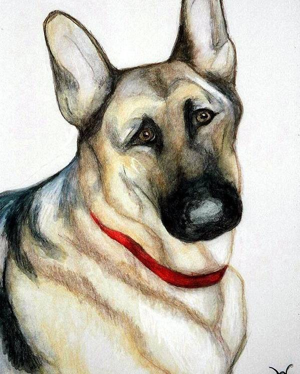 German Shepherd Pet Potraits Poster featuring the painting Chief by Debra Sandstrom