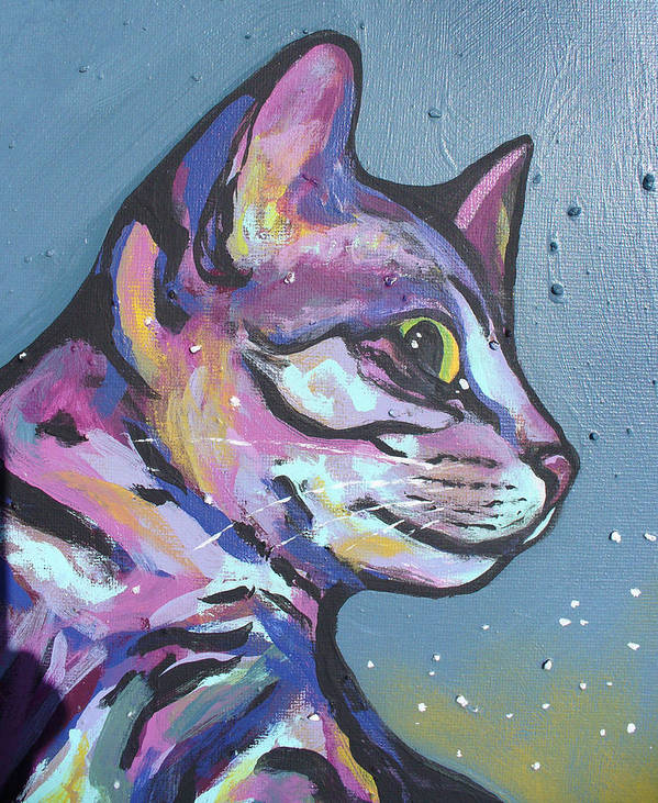 Cat Poster featuring the painting Close Rainbow Rocky by Sarah Crumpler