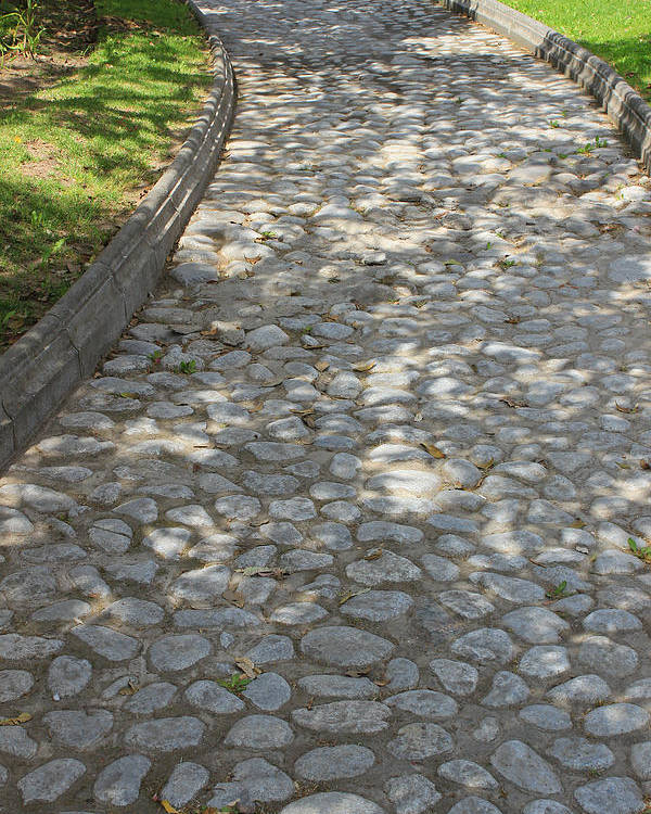 Cobblestone Poster featuring the photograph Cobblestone Path In A Park by Robert Hamm