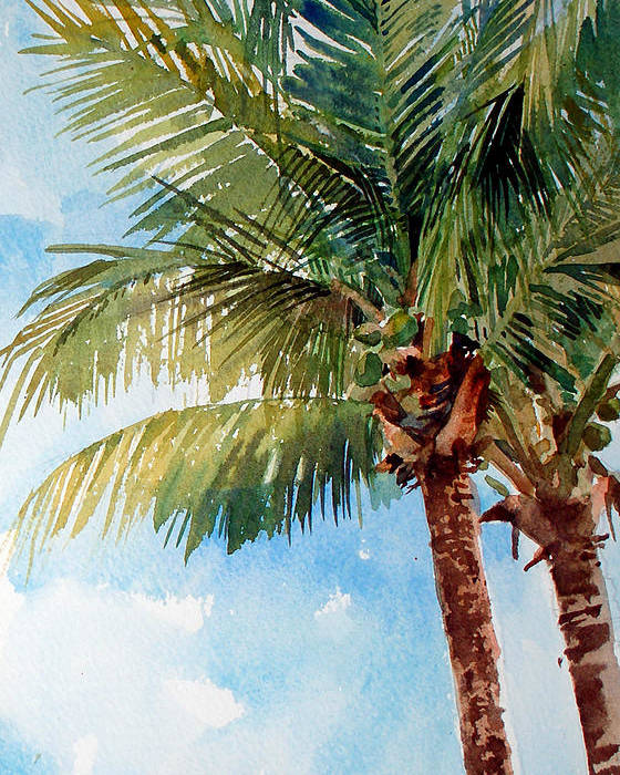 Coconut Palm Poster featuring the painting Coconut Palm by Peter Sit