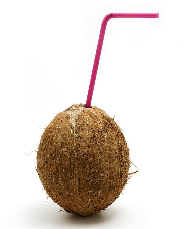White Background Poster featuring the photograph Coconut With A Straw by Fabrizio Troiani