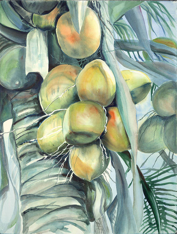 Coconut Palm Poster featuring the painting Coconuts by Ileana Carreno