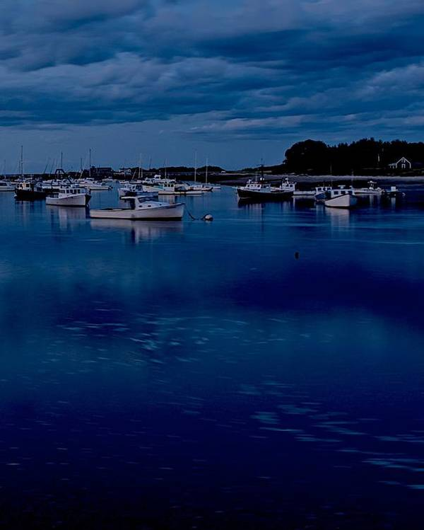 Cohasset Poster featuring the photograph Cohasset Harbor Portrait by Gene Sizemore