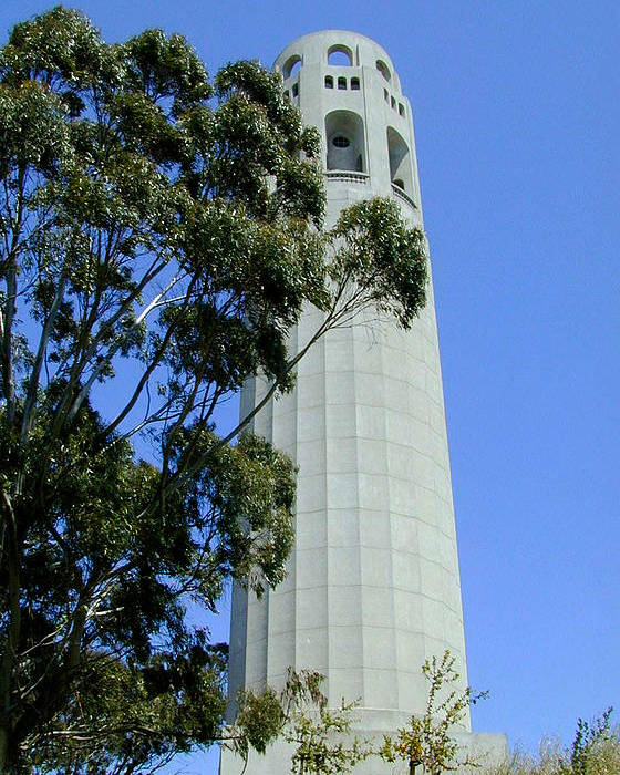 Coit Poster featuring the photograph Coit Tower by Douglas Barnett