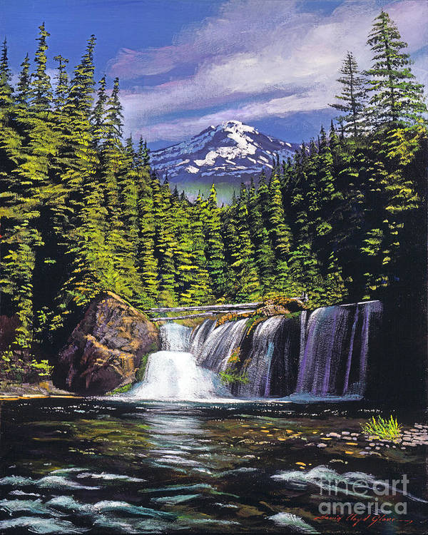 Forest Poster featuring the painting Cold Water Falls by David Lloyd Glover