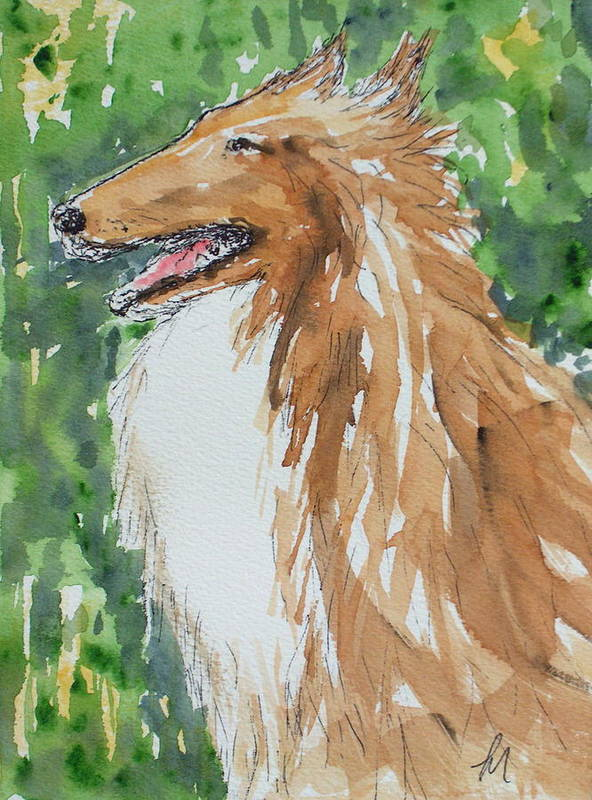 Dog Poster featuring the painting Collie by Pete Maier