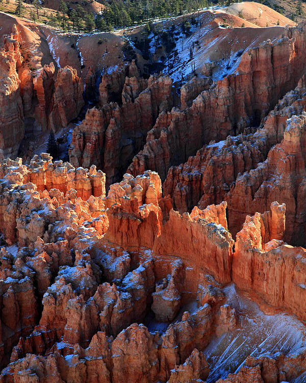 Bryce Poster featuring the photograph colorful hoodoos in Bryce Canyon by Pierre Leclerc Photography