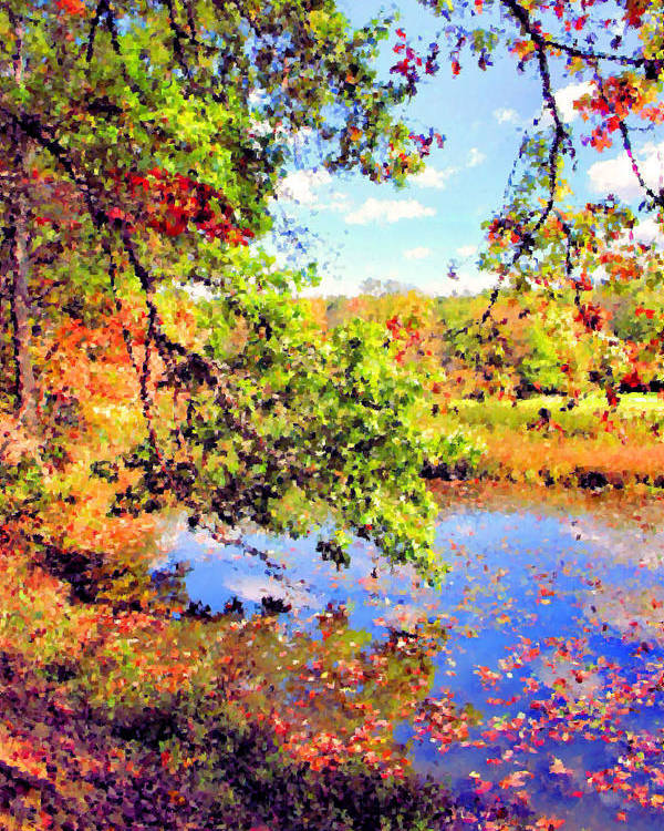 Virginia Kendall Park Poster featuring the photograph Colorful Reflections by Kristin Elmquist