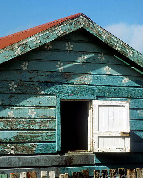 Ambergris Caye Poster featuring the photograph Colorful Shack by John Greim