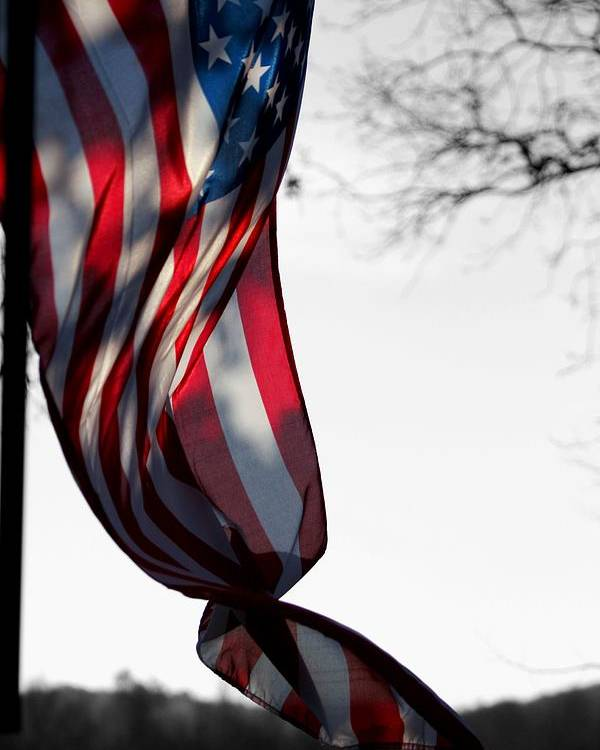 Flag Poster featuring the photograph Colors In The Wind by Lisa Johnston