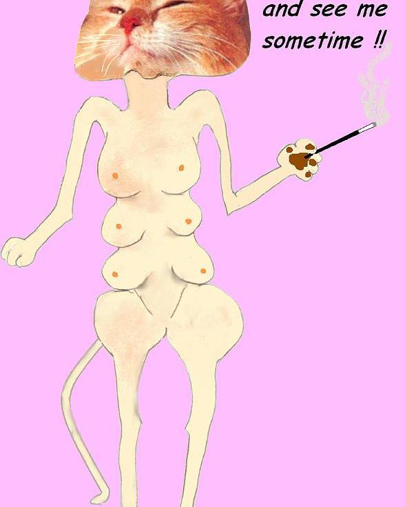 Cat Comic Pink Bare Poster featuring the mixed media Come Up And See Me by Bethwyn Mills