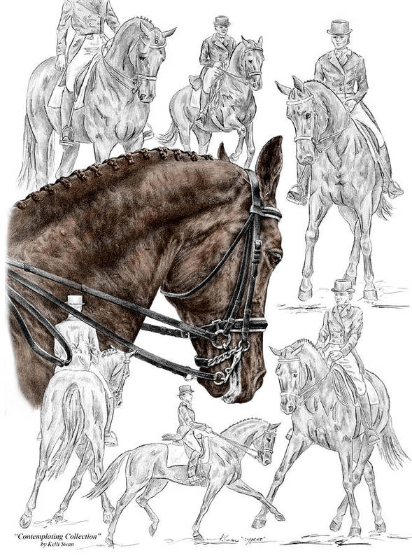 Contemplating Collection - Dressage Horse Print Color Tinted Poster ...