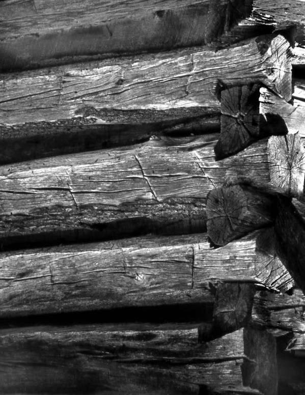 Ansel Adams Poster featuring the photograph Corner-logs by Curtis J Neeley Jr