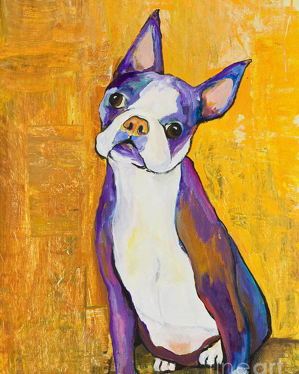 Boston Terrier Animals Acrylic Dog Portraits Pet Portraits Animal Portraits Pat Saunders-white Poster featuring the painting Cosmo by Pat Saunders-White