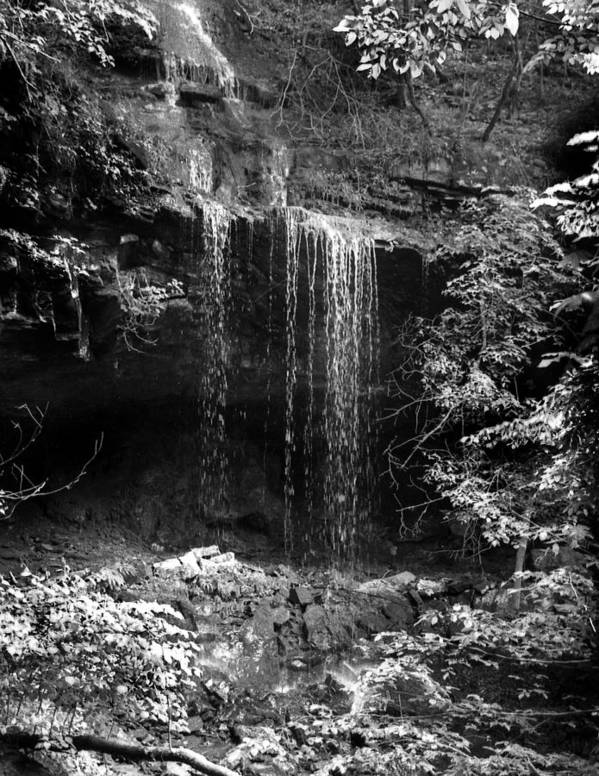Ansel Adams Poster featuring the photograph Crikfall by Curtis J Neeley Jr
