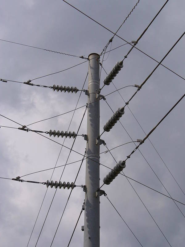 Outdoor Poster featuring the photograph Crossed Wires by Stephanie Richards