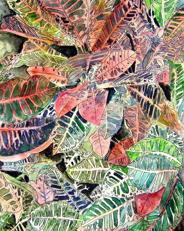Croton Poster featuring the painting Croton Tropical Art Print by Derek Mccrea