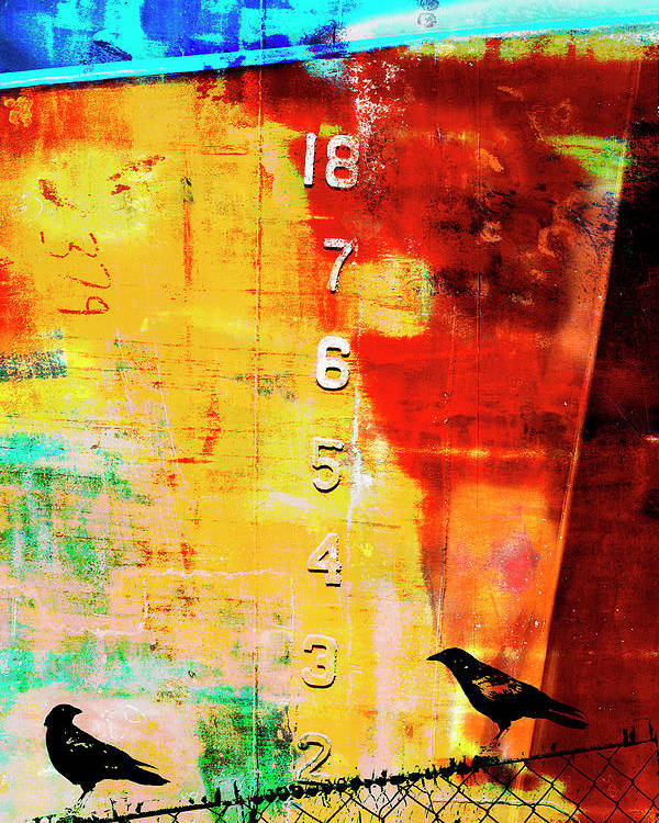 Mixed Media Poster featuring the mixed media Crows By The Numbers Mixed Media by Carol Leigh