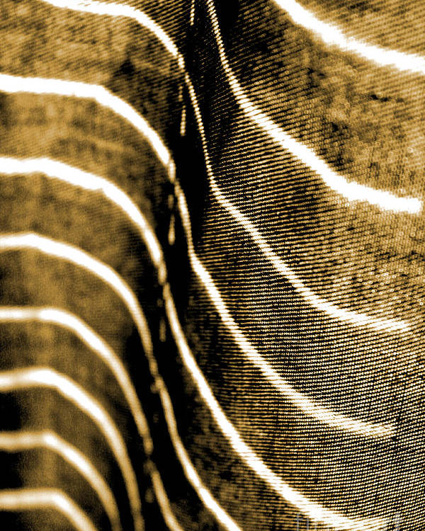 Abstract Poster featuring the photograph Curves And Folds by Todd Blanchard