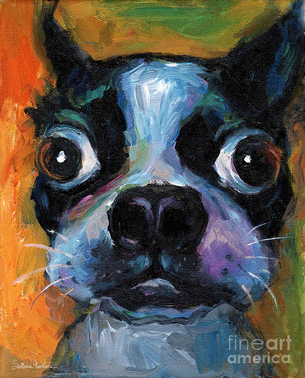 Cute Boston Terrier Poster featuring the painting Cute Boston Terrier Puppy Art by Svetlana Novikova