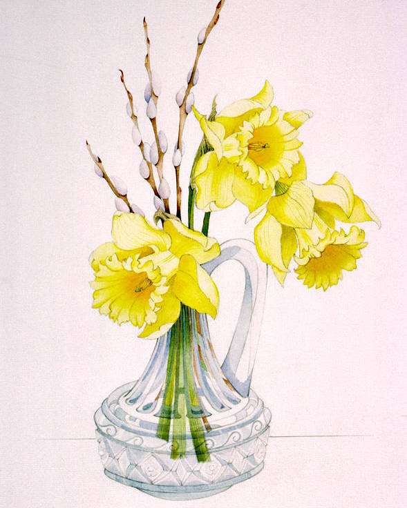 Daffodils. Pussy Willow. Spring Flowers. Glass Vase. Spring Still Life. Golden Daffodils. Poster featuring the painting Daffodils And Pussy Willow by Lynette Carrington-Smith