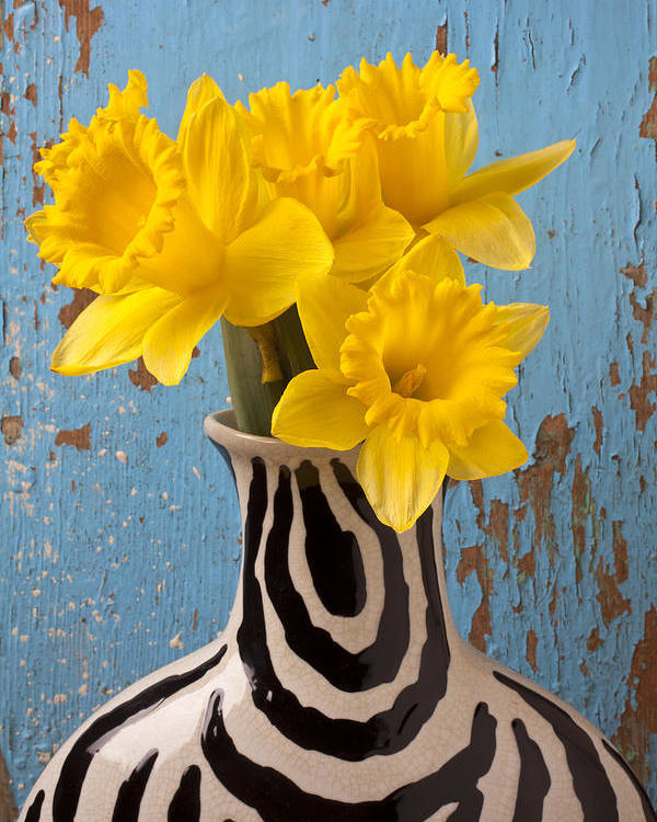 Yellow Poster featuring the photograph Daffodils In Wide Striped Vase by Garry Gay
