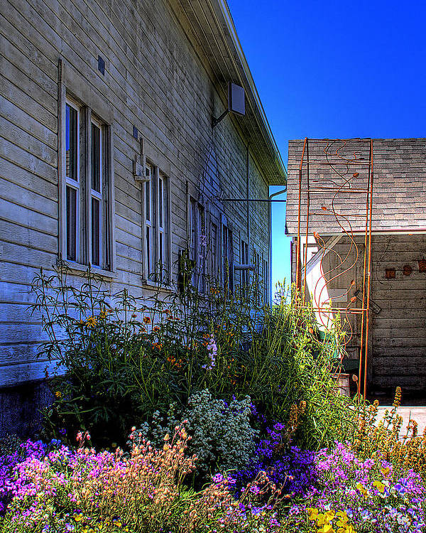 Dahmen Barn Poster featuring the photograph Dahmen Barn Flowers by David Patterson