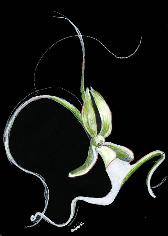 Floral Flower Dance Orchid Poster featuring the print Dance Of The Ghost Orchid by Carliss Mora
