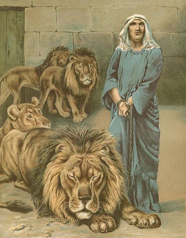 Daniel In The Lions' Den By John Lawson (19th Century) Bible Poster featuring the painting Daniel In The Lions Den by John Lawson