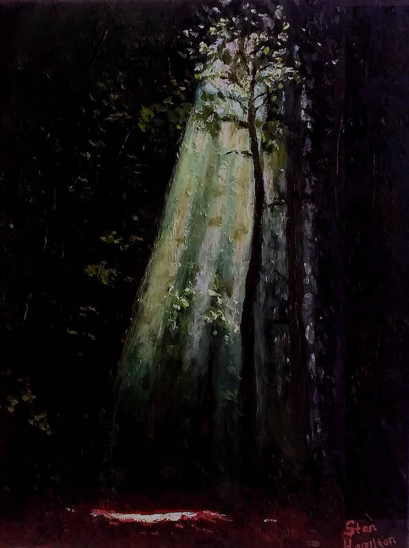 Dark Poster featuring the painting Dark Forest by Stan Hamilton