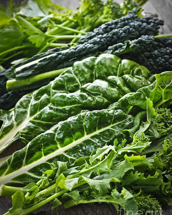 Dark Green Poster featuring the photograph Dark Green Leafy Vegetables by Elena Elisseeva