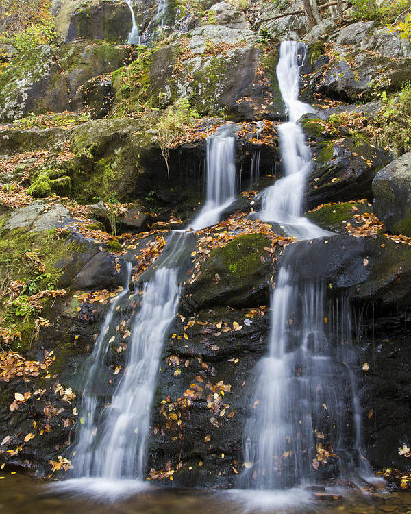 Shenandoah Poster featuring the photograph Dark Hollow Falls Shenandoah National Park by Pierre Leclerc Photography