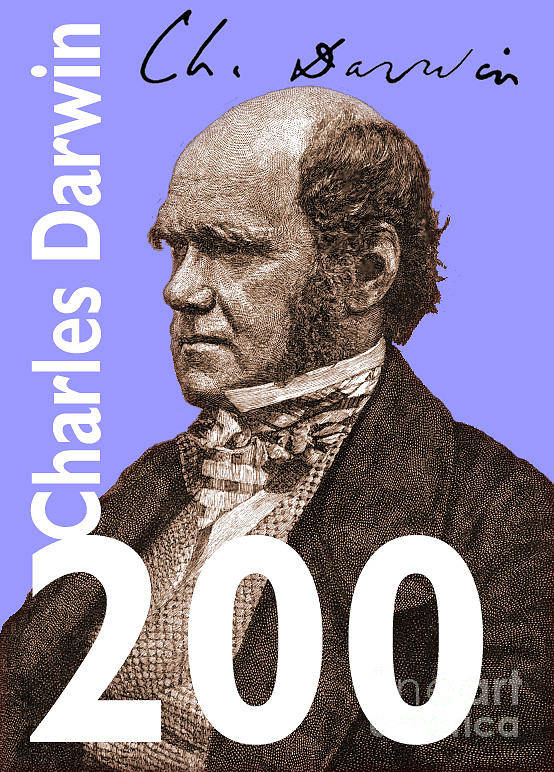 Charles Darwin Poster featuring the digital art Darwin 200 Lilac by Steve Wyburn