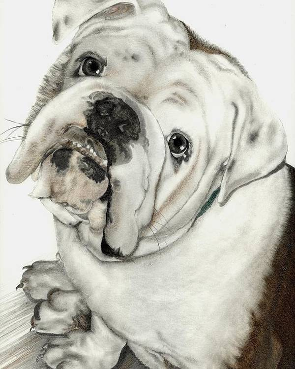 Pets Poster featuring the mixed media Dean' Buddy by Lisa Bell