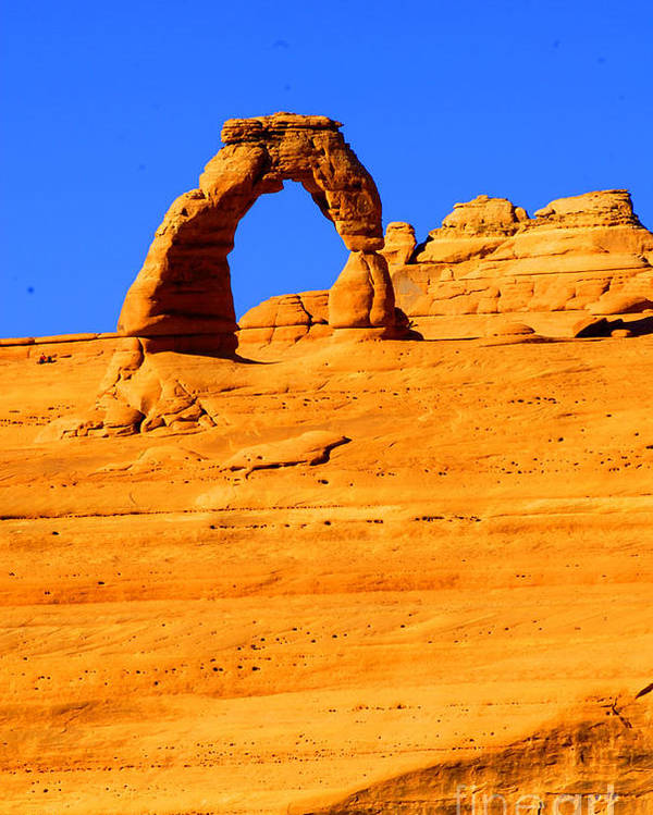 Arches Poster featuring the photograph Delicate Arch by Dennis Hammer