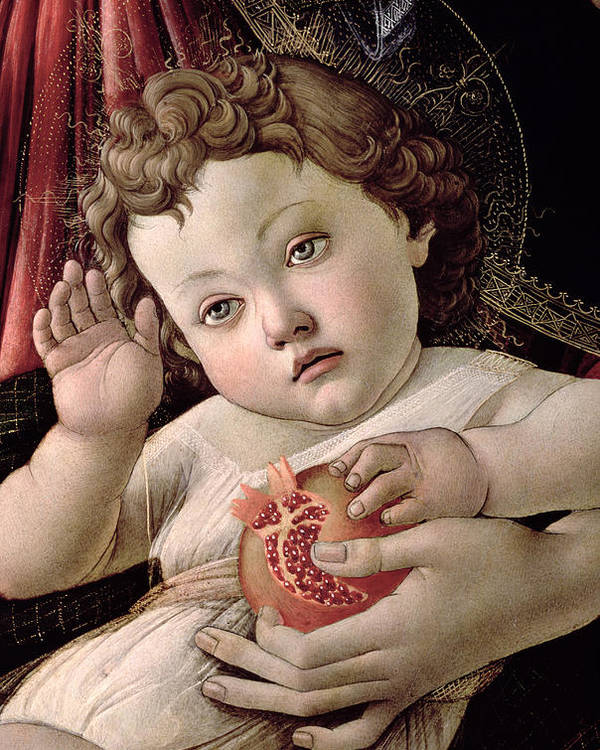 Detail Poster featuring the painting Detail Of The Christ Child From The Madonna Of The Pomegranate by Sandro Botticelli