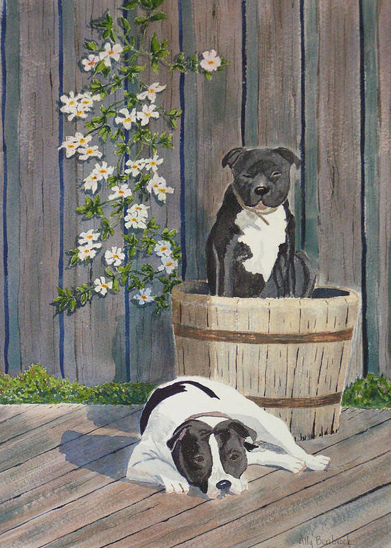 Dog Poster featuring the painting Devilish Duo At Rest by Ally Benbrook