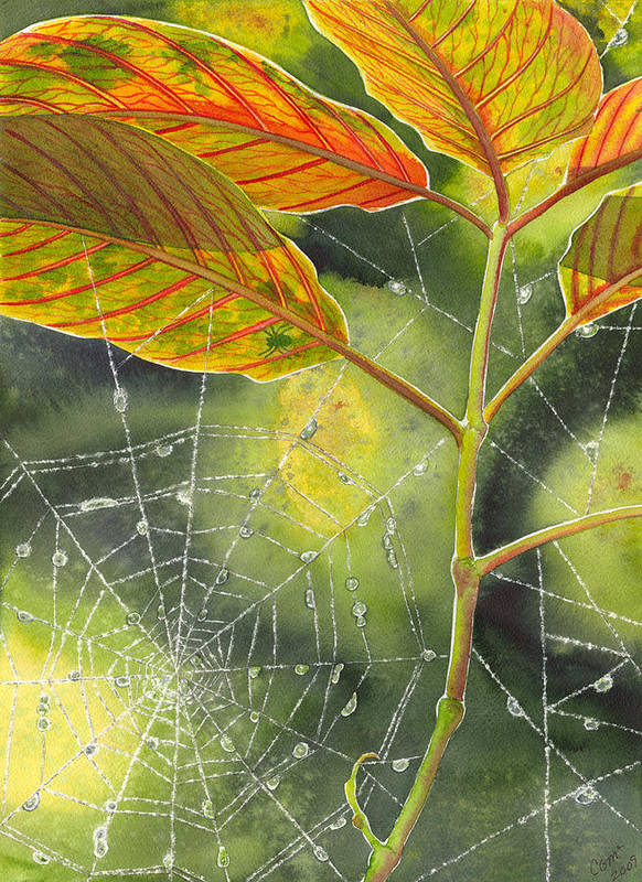 Web Poster featuring the painting Dew Drop by Catherine G McElroy